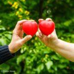 «Сдавай регулярно. Организуй профессионально»: стартовал новый проект Национального фонда развития здравоохранения иМосковского ресурсного центра подонорству крови